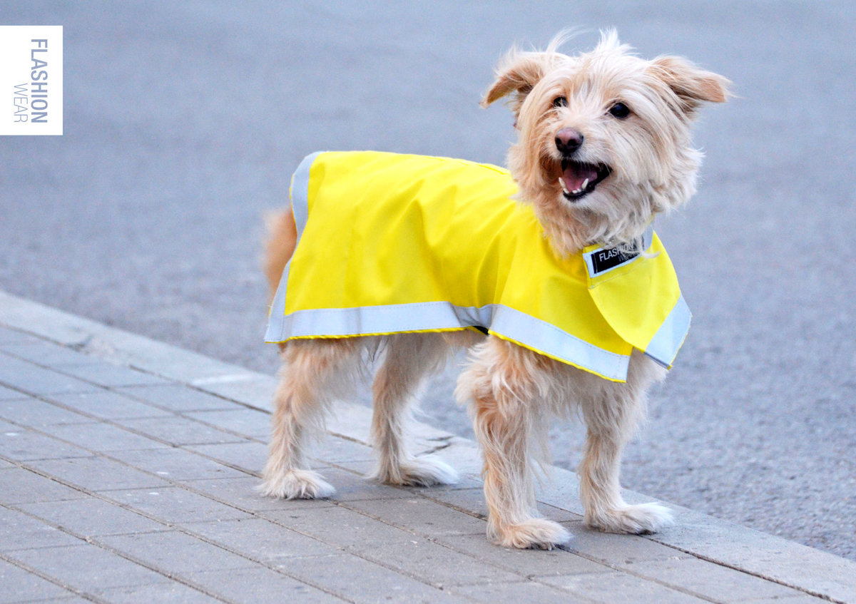 Reflective vest for dog, dog rain coat.